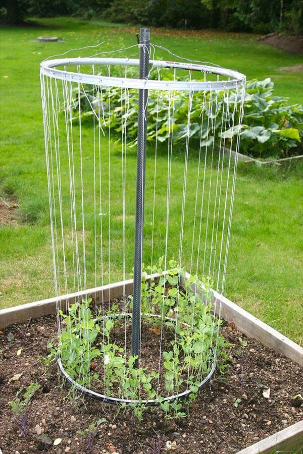 diy recycled rim bike trellis