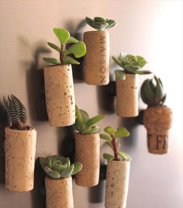 diy cork mini wall hanging planters
