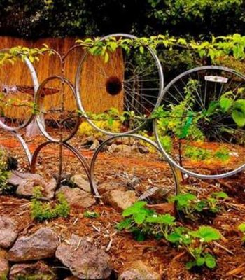 diy recycled easy idea bike rim trellis