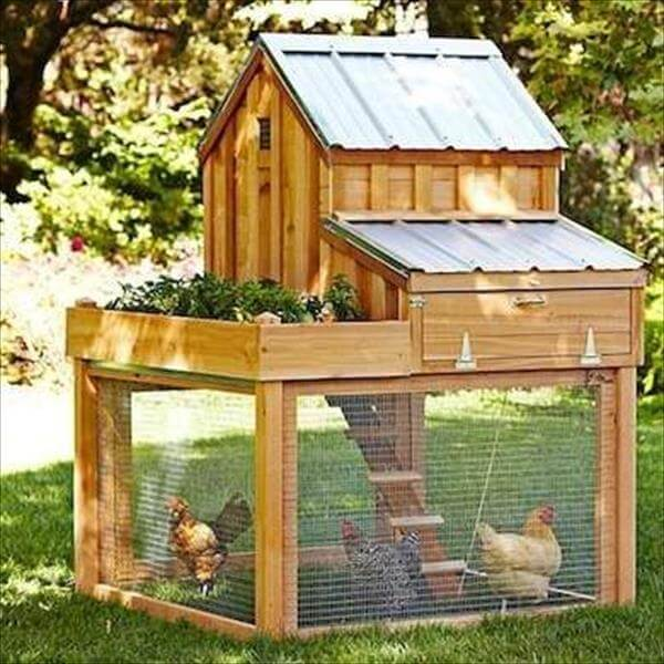 pallet split level chicken coop